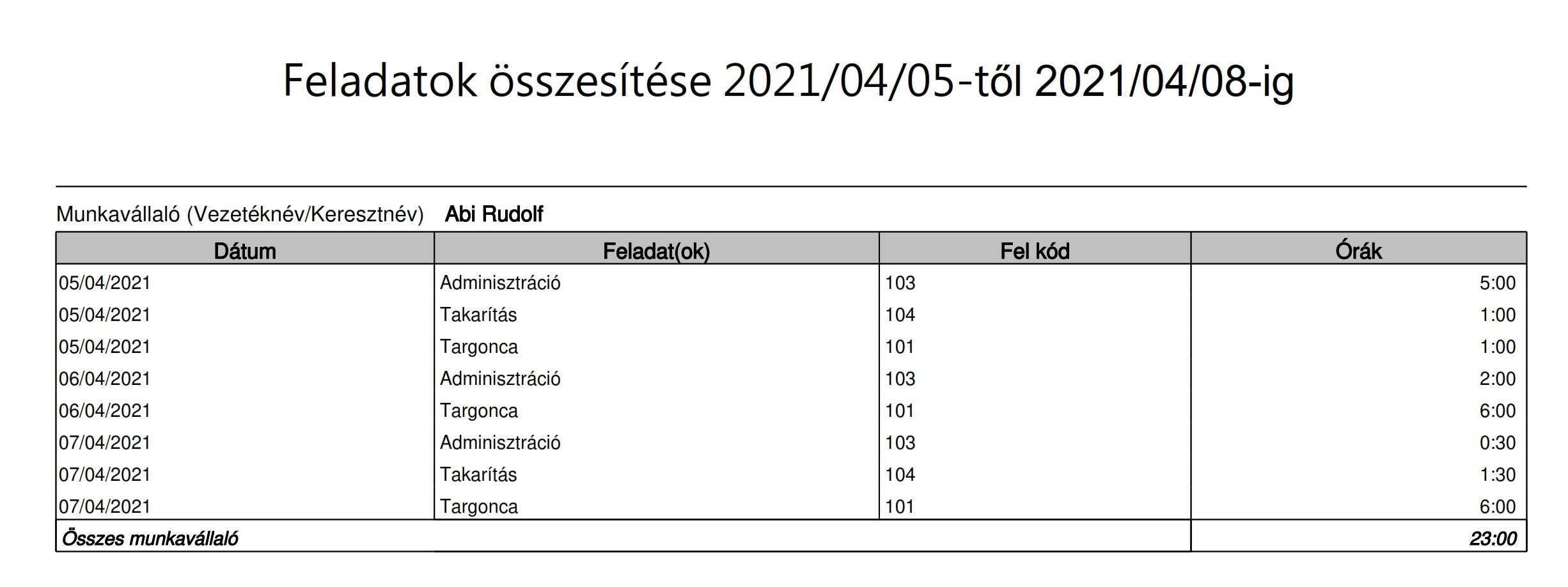 Kelio Analitika task report